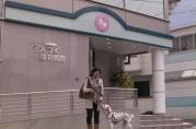 (隠れ)看板犬てんちゃん、すえつぐ動物病院へ行く。